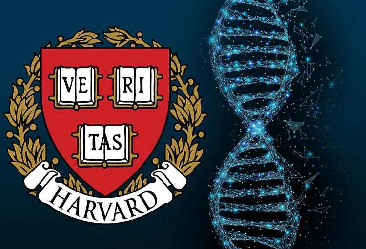 Genetistas de harvard lanzan un startup de blockchain inspirado en el adn