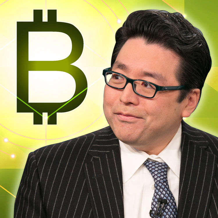 Tom Lee elige Bitcoin antes que Bitcoin Cash