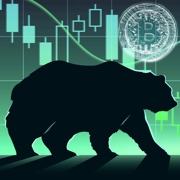 Los Osos empujan Bitcoin