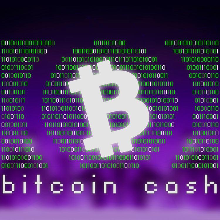 Bitcoin Cash se Bifurca
