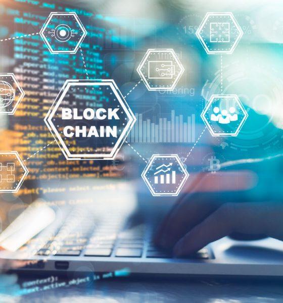 Desarrolladores Blockchain al Alza