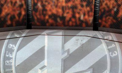Litecoin Patrocina el Proximo Combate UFC