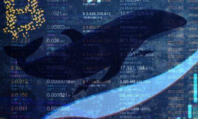 El bitcoin se acerca a los 50.000 dólares en medio de una crisis de oferta provocada por las ballenas; he aquí el motivo