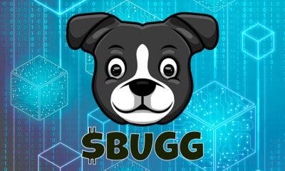 BUGG INU - Un modelo único para el futuro de las finanzas